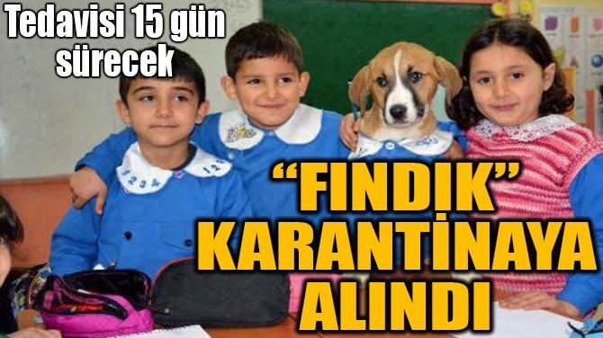"""FINDIK"" KARANTİNAYA ALINDI"