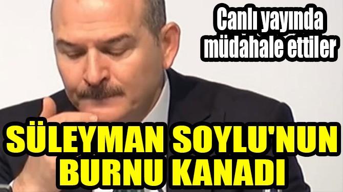 SÜLEYMAN SOYLU'NUN BURNU KANADI