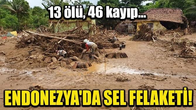 ENDONEZYA'DA SEL FELAKATİ!