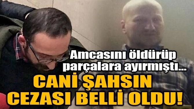 CANİ ŞAHSIN CEZASI BELLİ OLDU!