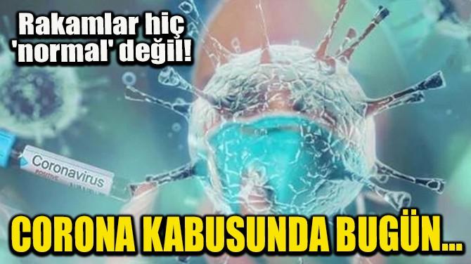 CORONA KABUSUNDA BUGÜN! RAKAMLAR HİÇ 'NORMAL' DEĞİL!