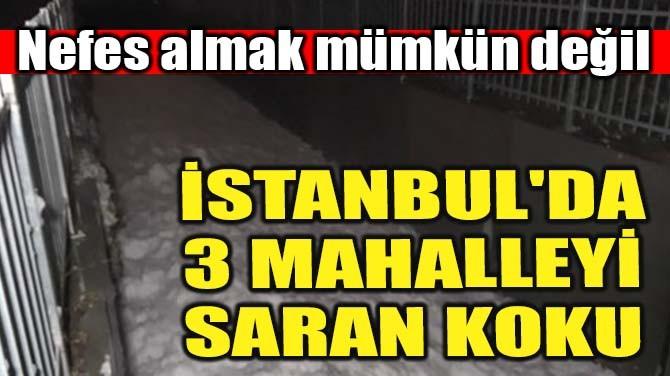 İSTANBUL'DA 3 MAHALLEYİ SARAN KOKU