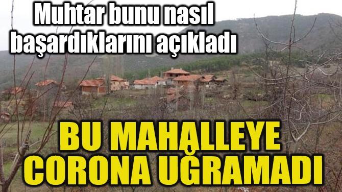 BU MAHALLEYE CORONA GİRMEDİ
