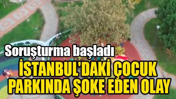 İSTANBUL'DAKİ ÇOCUK  PARKINDA ŞOKE EDEN OLAY