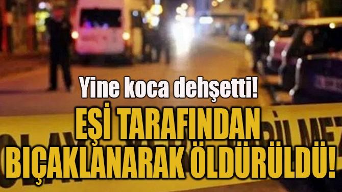 EŞİ TARAFINDAN BIÇAKLANARAK ÖLDÜRÜLDÜ!