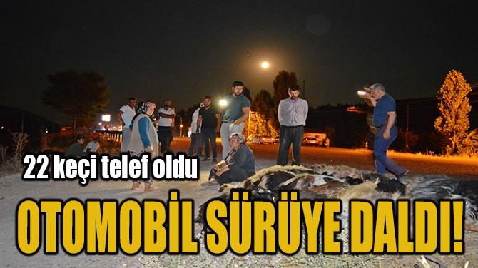 OTOMOBİL SÜRÜYE DALDI!