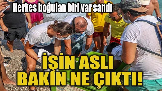 İŞİN ASLI BAKIN NE ÇIKTI!