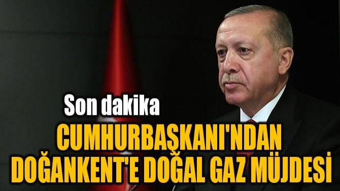 CUMHURBAŞKANI'NDAN DOĞANKENT'E  DOĞAL GAZ MÜJDESİ