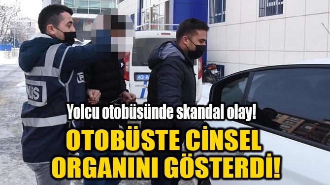 YOLCU OTOBÜSÜNDE İKİ KADINA CİNSEL ORGANINI GÖSTERDİ!