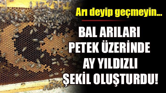 BAL ARILARI PETEK ÜZERİNDE AY YILDIZLI ŞEKİL OLUŞTURDU!