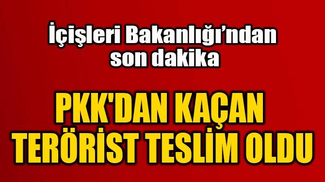 PKK'DAN KAÇAN  TERÖRİST TESLİM OLDU