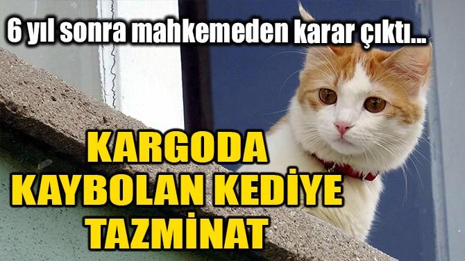 KARGODA KAYBOLAN KEDİYE TAZMİNAT