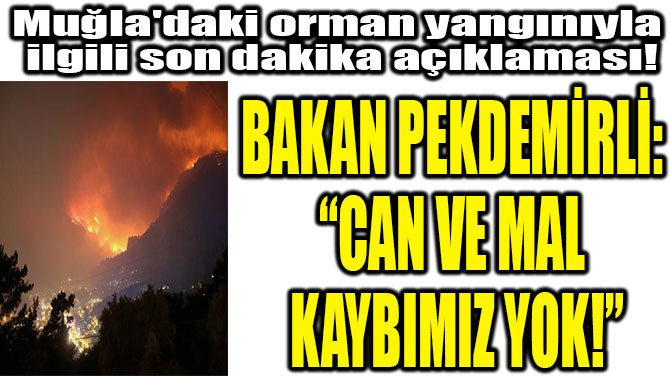 """BAKAN PEKDEMİRLİ: """"CAN VE MAL  KAYBIMIZ YOK!"""""""