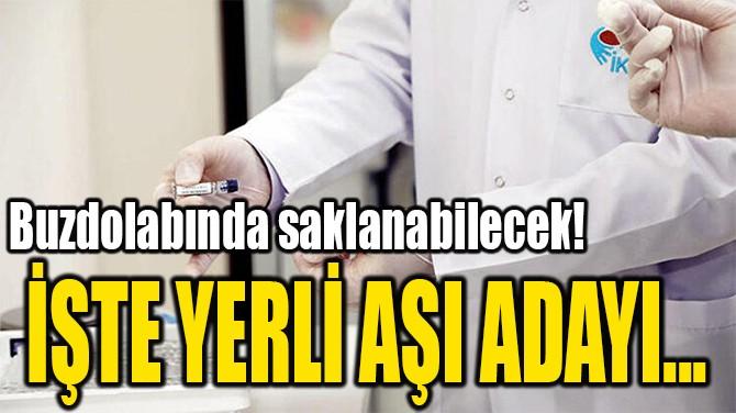 İŞTE YERLİ AŞI ADAYI...