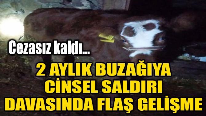 2 AYLIK BUZAĞIYA CİNSEL SALDIRI DAVASINDA FLAŞ GELİŞME!