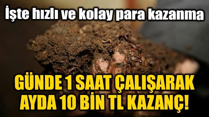 GÜNDE 1 SAAT ÇALIŞARAK AYDA 10 BİN TL KAZANÇ!