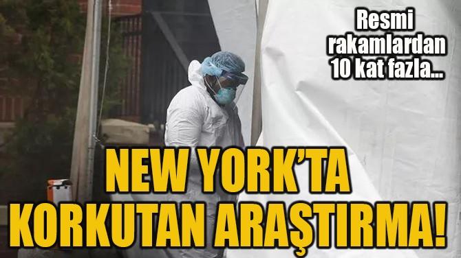 NEW YORK'TA  KORKUTAN ARAŞTIRMA!