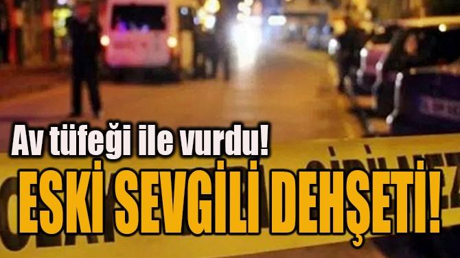 ESKİ SEVGİLİ DEHŞETİ!