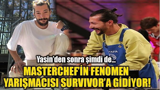 MASTERCHEF'İN FENOMEN  YARIŞMACISI SURVIVOR'A GİDİYOR!