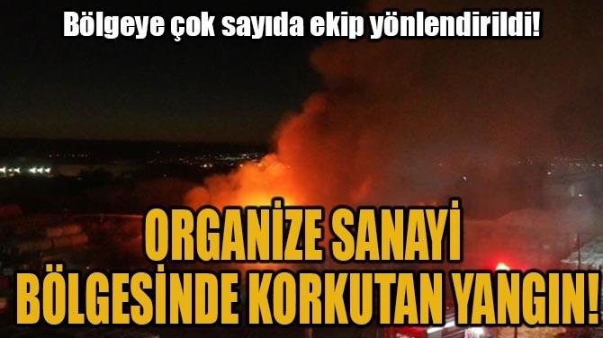 ORGANİZE SANAYİ  BÖLGESİNDE KORKUTAN YANGIN!