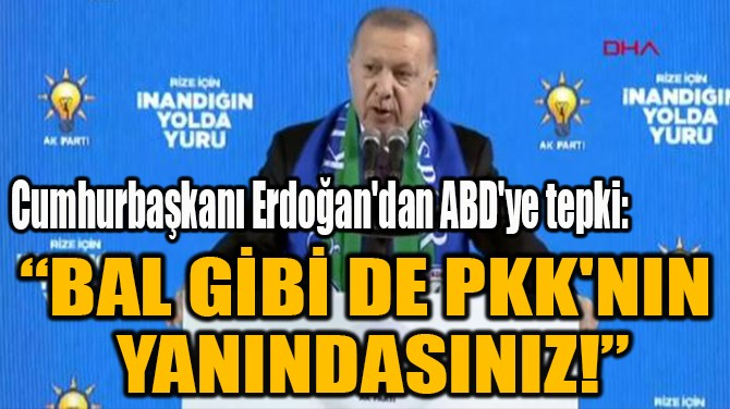 """""""BAL GİBİ DE PKK'NIN  YANINDASINIZ!"""""""