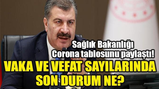 17 ŞUBAT CORONAVİRÜS TABLOSU!