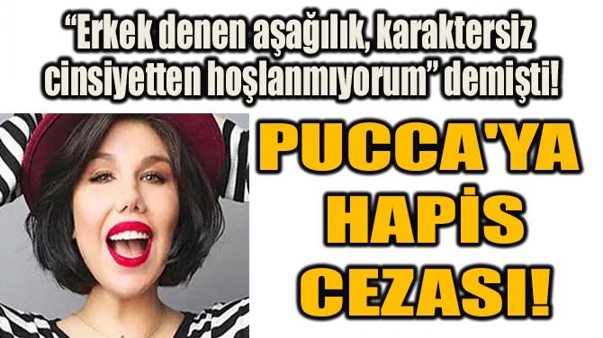 PUCCA'YA   HAPİS  CEZASI!