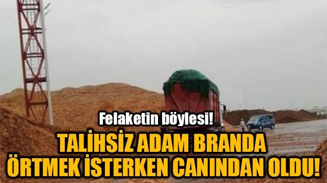 TALİHSİZ ADAM BRANDA  ÖRTMEK İSTERKEN CANINDAN OLDU!