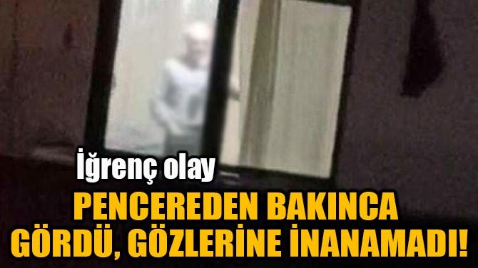 PENCEREDEN BAKINCA GÖRDÜ, GÖZLERİNE İNANAMADI!