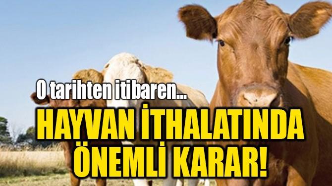 HAYVAN İTHALATINDA  ÖNEMLİ KARAR!