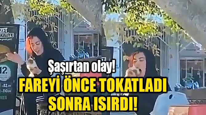 FAREYİ ÖNCE TOKATLADI SONRA ISIRDI!