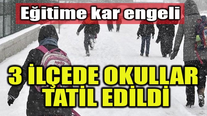 3 İLÇEDE OKULLAR TATİL EDİLDİ!