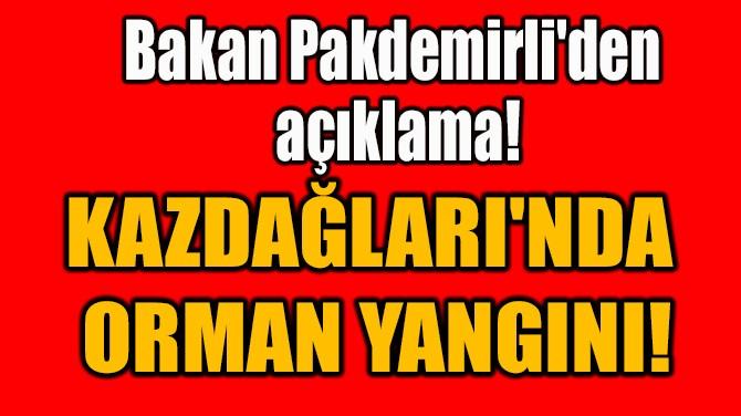 KAZDAĞLARI'NDA  ORMAN YANGINI!