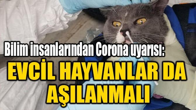 """""""EVCİL HAYVANLAR DA  AŞILANMALI"""""""