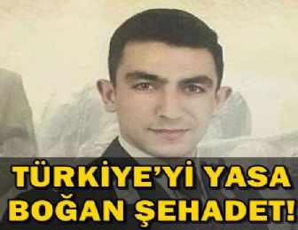 """""""ZEYTİN DALI"""" ŞEHİDİNİN İSMİ ORADA YAŞAYACAK!.."""