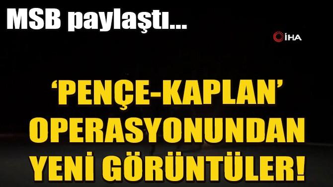 'PENÇE-KAPLAN' OPERASYONUNDAN YENİ GÖRÜNTÜER!