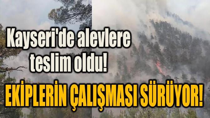 KAYSERİ'DE ALEVLERE TESLİM OLDU!