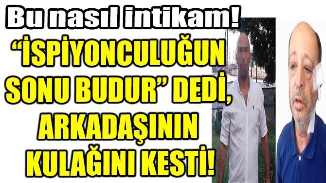 """""""İSPİYONCULUĞUN SONU BUDUR"""" DEDİ, ARKADAŞININ KULAĞINI KESTİ"""