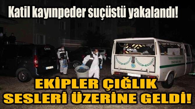EKİPLER ÇIĞLIK SESLERİ ÜZERİNE GELDİ!