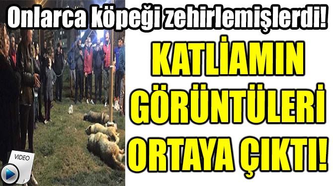 KATLİAMIN GÖRÜNTÜLERİ ORTAYA ÇIKTI!