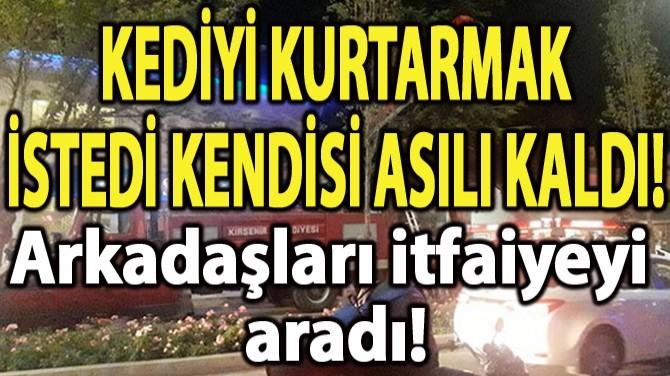 KEDİYİ KURTARMAK İSTERKEN AĞAÇTA ASILI KALDI!
