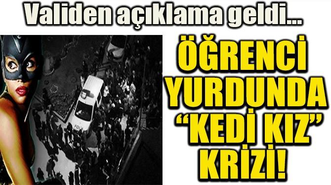 """ÖĞRENCİ YURDUNDA """"KEDİ KIZ"""" KRİZİ!"""
