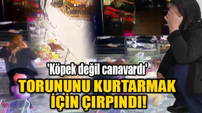 TORUNUNU KURTARMAK İÇİN ÇIRPINDI!