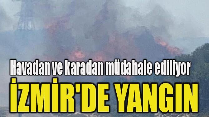 İZMİR'DE YANGIN