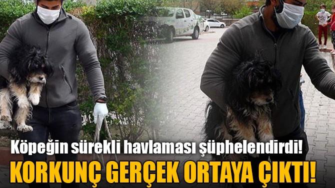 KORKUNÇ GERÇEK ORTAYA ÇIKTI!