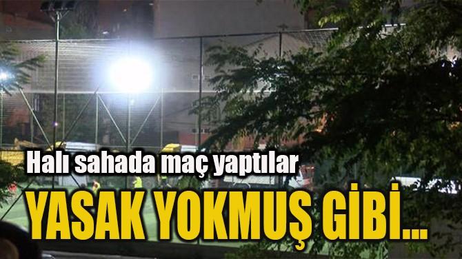 YASAK YOKMUŞ GİBİ...