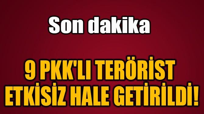 9 PKK'LI TERÖRİST  ETKİSİZ HALE GETİRİLDİ!