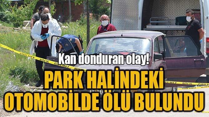 PARK HALİNDEKİ OTOMOBİLDE ÖLÜ BULUNDU