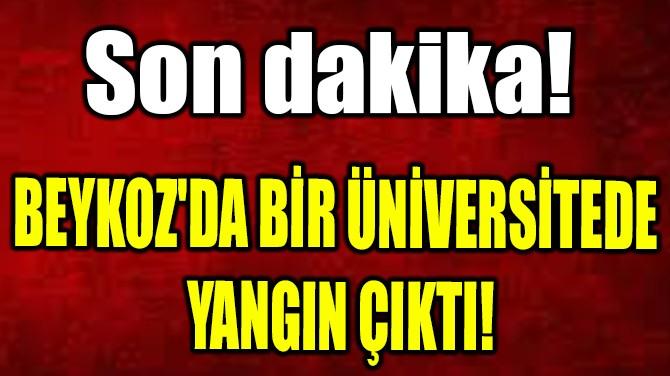 BEYKOZ'DA BİR ÜNİVERSİTEDE  YANGIN ÇIKTI!