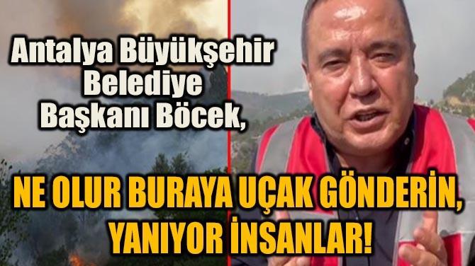 BAŞKAN BÖCEK, YETKİLİLERE SESLENDİ!
